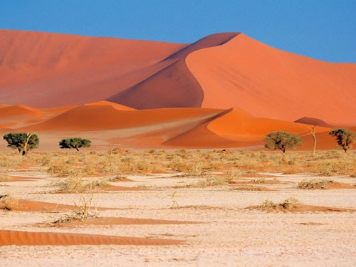 Rondreis Highlights Van Namibie